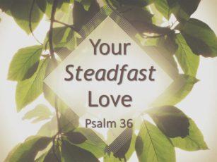 Your Steadfast Love