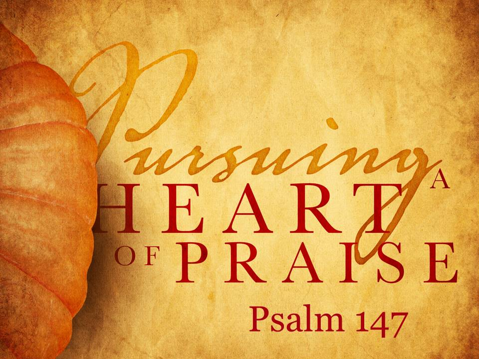 Pursuing a Heart of Praise #2