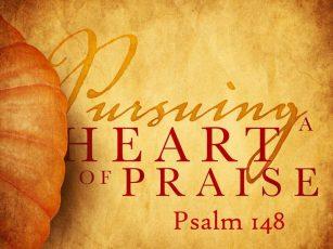 Pursuing a Heart of Praise #3