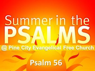 Summer in the Psalms- Psalm 56